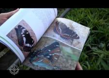 Presentazione dei libri di Domenico Gabrieli – ANLC