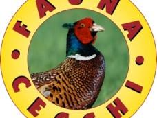 Fauna Cecchi