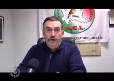 Intervista a Casella del 21 gennaio 2013