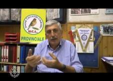 Intervista al Presidente Carlo Bravo sull'ISPRA