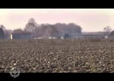 Caccia a fagiani e starne con il falco