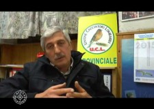 ACL – Intervista al Presidente Regionale Carlo Bravo del 12 gennaio 2015