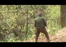 Caccia al cinghiale con avancarica alla Baraggia
