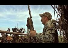 Caccia da campo alle anatre
