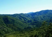 Wilderness: I COMUNI CONTRO L'AREA CONTIGUA DEL PARCO D'ABRUZZO.