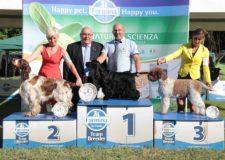 Esposizione canina di Orvieto