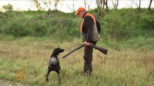 La caccia con il cane da ferma