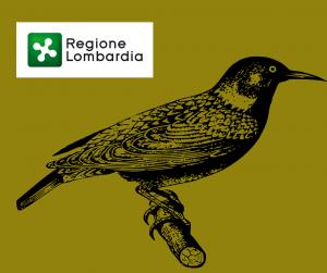 Storno - autorizato il prelievo in deroga in Lombardia