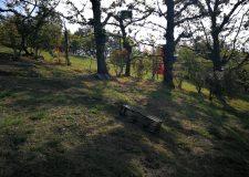 Roccoli- Lombardia respinge al mittente la richiesta di ritiro della delibera roccoli