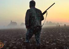 Questura Brescia :  novità rinnovi porto d'armi caccia