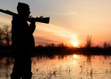 La Commissione ha utilizzato la definizione di zona umida della Convenzione di Ramsar