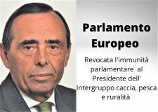 Revocata l'immunità parlamentare a Alvaro Amaro