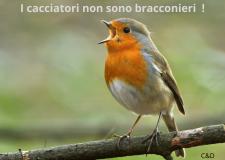 RAI Regione Lombardia : la macchina del fango e delle menzogne !