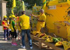 Coldiretti : 1a festa educazione alimentare