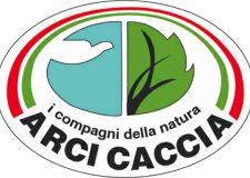 Sulla tortora l' Arci Caccia bacchetta la Regione Lazio